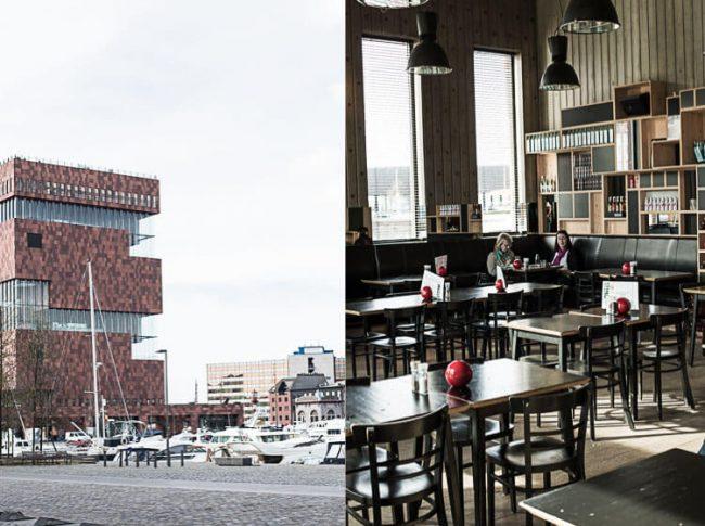 Het mas in Antwerpen | simoneskitchen.nl