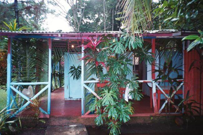 Insectenfobie in de jungle